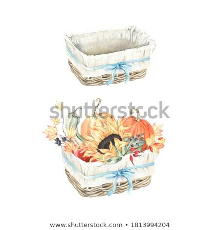 плетеный корзины оранжевый роз красивой Сток-фото © dashapetrenko