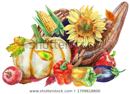Watercolor cornucopia filled with vegetables and fruits on white background Stock photo © Natalia_1947