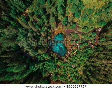 Geyser lake with thermal springs Stock photo © olira