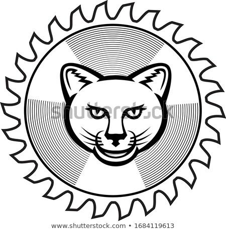 Mosolyog puma körkörös fűrész penge ikon Stock fotó © patrimonio