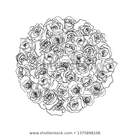Gyönyörű skicc forma fehér izolált virág Stock fotó © evgeny89