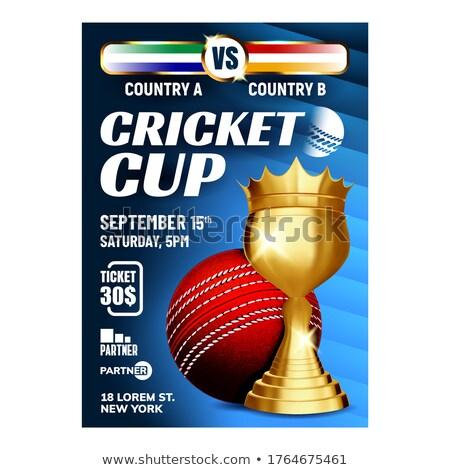 Kriket şampiyonluk fincan broşür afiş vektör Stok fotoğraf © pikepicture
