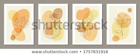 bella · sereno · autunno · parco · collage · legno - foto d'archivio © pressmaster