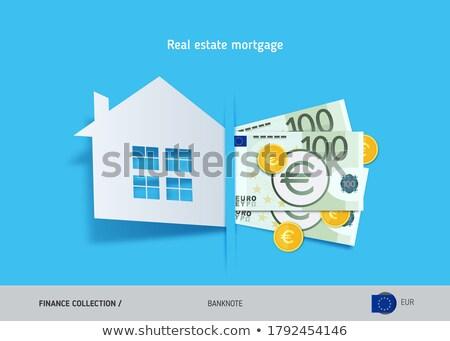 евро дома изолированный белый бизнеса зеленый Сток-фото © digitalstorm