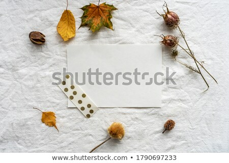 Autumn sheet by frame stock photo © RuslanOmega