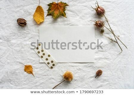 Autumn sheet by frame stock photo © RuslanOmega