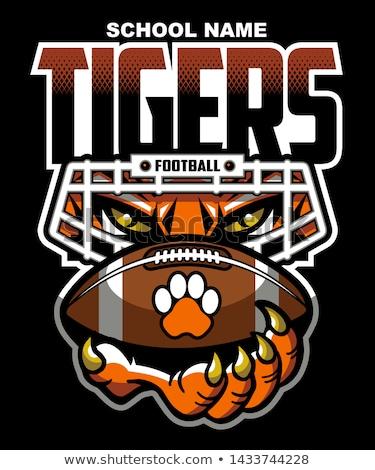 tigre · mascota · balón · de · fútbol · gráfico · vector - foto stock © pkdinkar
