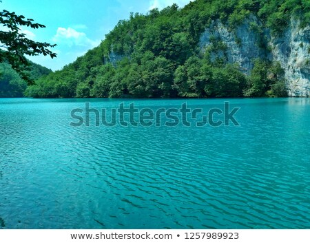 紺碧 湖 山 松 森林 自然 ストックフォト © RuslanOmega