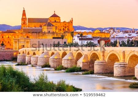 Roman bridge at dusk, Cordoba, Andalusia, Spain Stock photo © phbcz