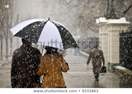 Couple taking a romantic walk in the snow Stock photo © photography33