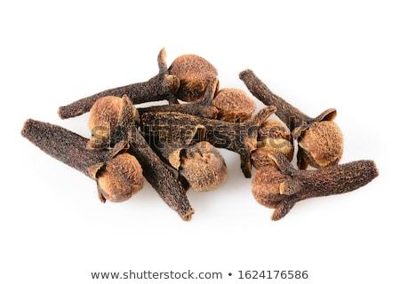 Clove in closeup Stock photo © Dionisvera