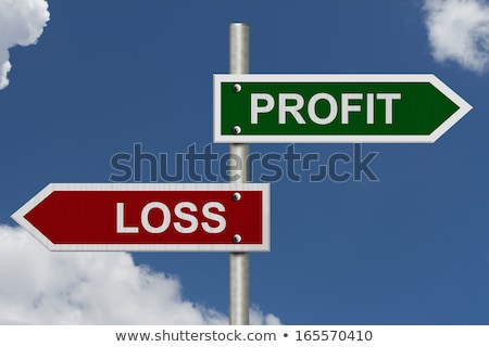 loss and profit text conception stock photo © deyangeorgiev