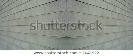 каменщик стены дома здании человека Сток-фото © photography33