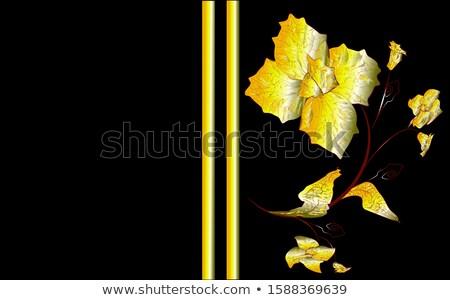 zene · logo · zongora · hangszóró · sablon · tánc - stock fotó © articular