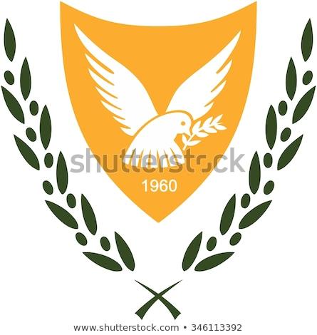 Abrigo armas Chipre imagen deporte bandera Foto stock © perysty