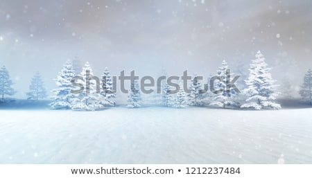 snowy winter scene in countryside stock photo © zzve