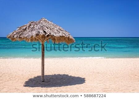 Straw Parasol on beach Stock photo © speedfighter