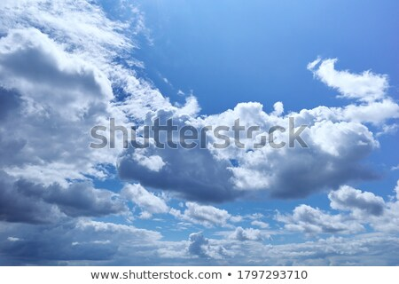 Light, transparent cumulus clouds - zenith of sky  Stock photo © pzaxe