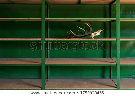 empty warehouse, out of stock or sold out concepts Stock photo © mtkang