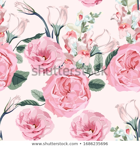 Сток-фото: Rose Abstract Floral Design Vector Illustration