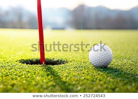 Stock photo: golf ball near the hole