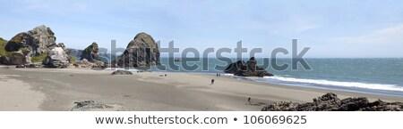 Oregon coastline panorama near Coos Bay. Stock photo © Rigucci
