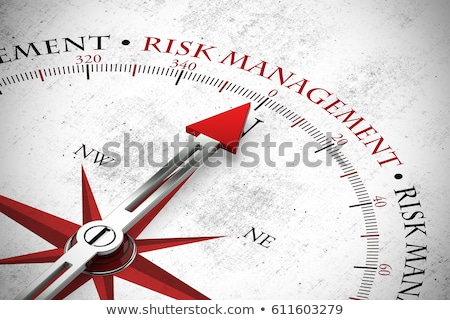 risk management in arrows Stock photo © marinini