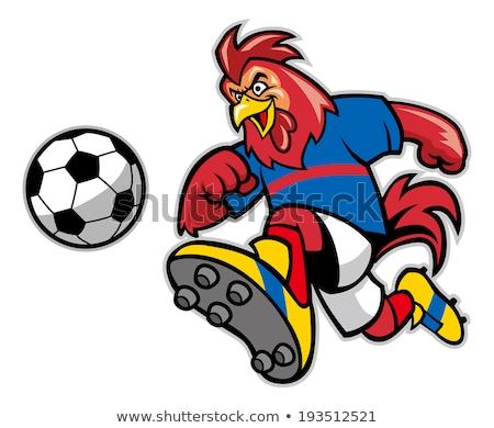 Gallo campeón Cartoon ilustración vector Foto stock © derocz