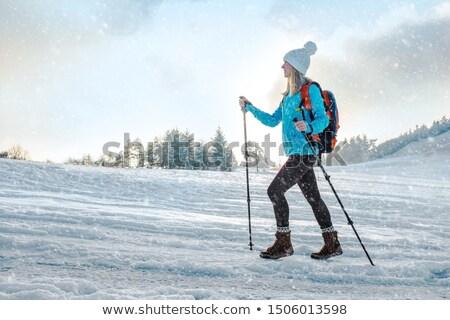 冬 · 山 · トレッキング · 木材 · アルプス山脈 · イタリア - ストックフォト © rmarinello