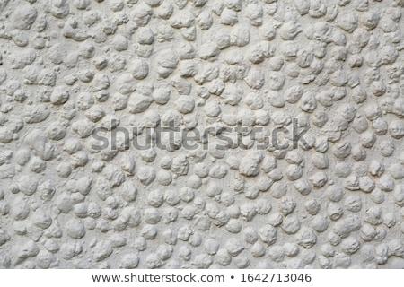 White pebble stones background stock photo © elxeneize