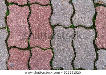 Concrete Paving Slabs. Seamless Tileable Texture. Stock photo © tashatuvango