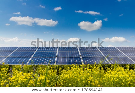 Solar panels on green grass Stock photo © andromeda
