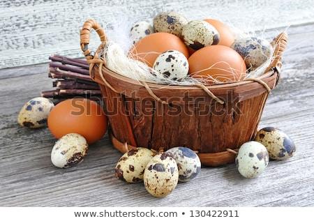 Huevos aislado blanco alimentos granja Foto stock © natika