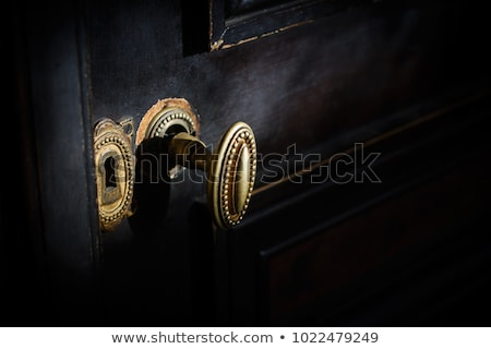 detail of an old door stock photo © taviphoto