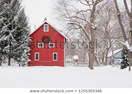 Rural Barn In Winter Stock photo © searagen
