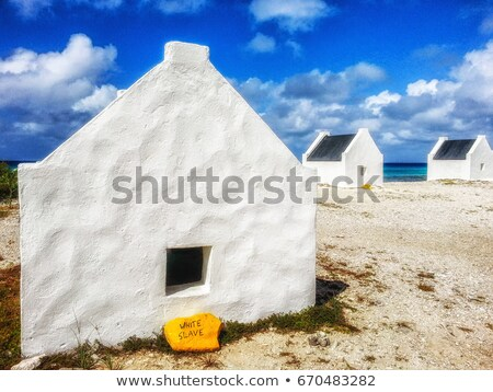 Saltpan on Bonaire Stock photo © Hofmeester