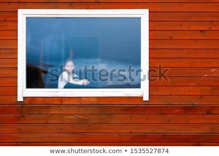 młoda · dziewczyna · mokro · okno · oglądać · dziewczyna · wnętrza - zdjęcia stock © Ainat