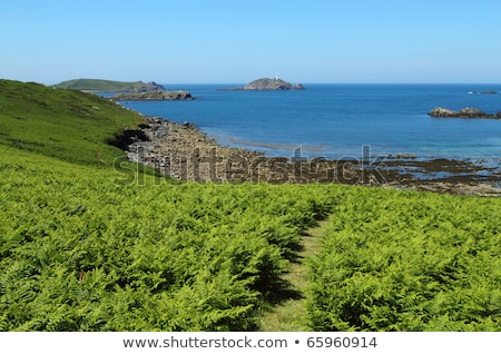 Path through fern in St. Martin's, Isles of Scilly. Stock photo © latent