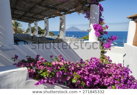 Panarea island terrace Stock photo © daboost