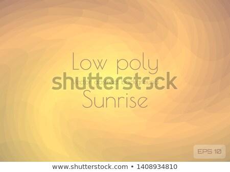 Zon abstract laag veelhoek stijl Stockfoto © patrimonio
