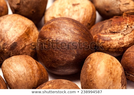 Betel nut unroasted (Areca catechu) Stock photo © ziprashantzi