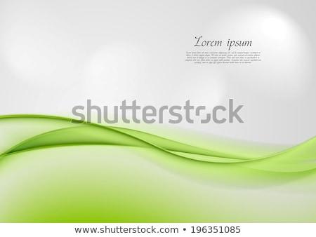 groene · grijs · abstract · golven · ontwerp · vector - stockfoto © saicle