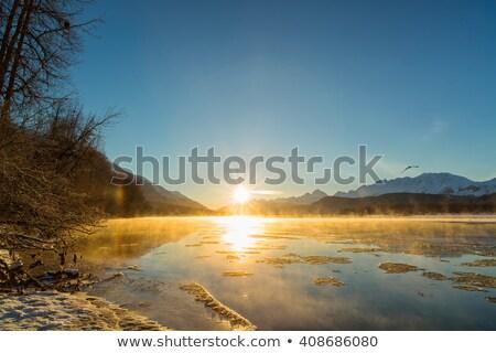 battenti · aquila · tramonto · artistico · illustrazione · sole - foto d'archivio © martin_kubik