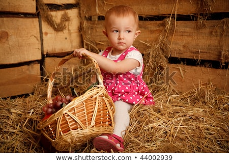 The little girl on straw with a basket of fruit against the wall of boards. Horizontal format. Stock photo © Paha_L