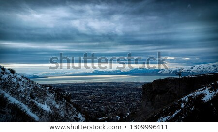 Snow capped mountain peak in the back ground of forest Stock photo © pzaxe