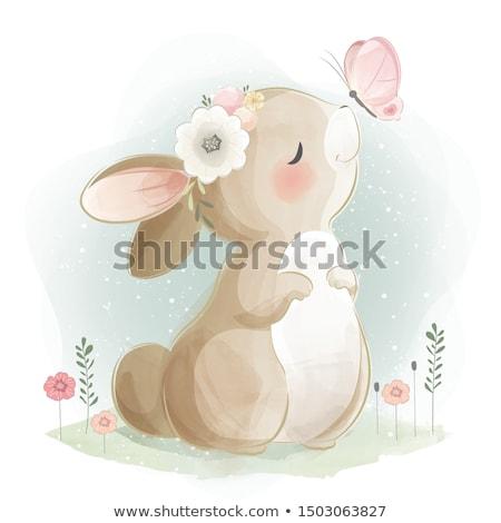 cute · bunny · kaart · vierkante · wenskaart · cartoon - stockfoto © zsooofija