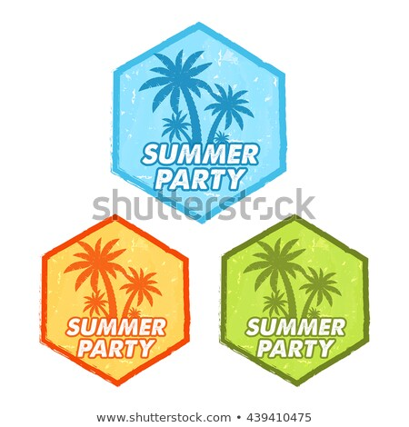 Summer Party With Palms Sign Grunge Flat Design Hexagons Labels Stockfoto © marinini