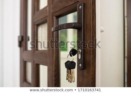 青 · 家 · ドアの鍵 · 実例 · キー · シルエット - ストックフォト © adrian_n