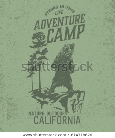 Nyári tábor ikon felirat logotípus vektor művészet Stock fotó © vector1st