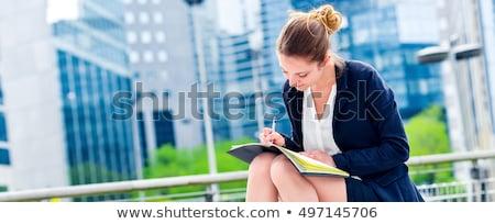dinâmico · jovem · executivo · agenda · menina - foto stock © pixinoo
